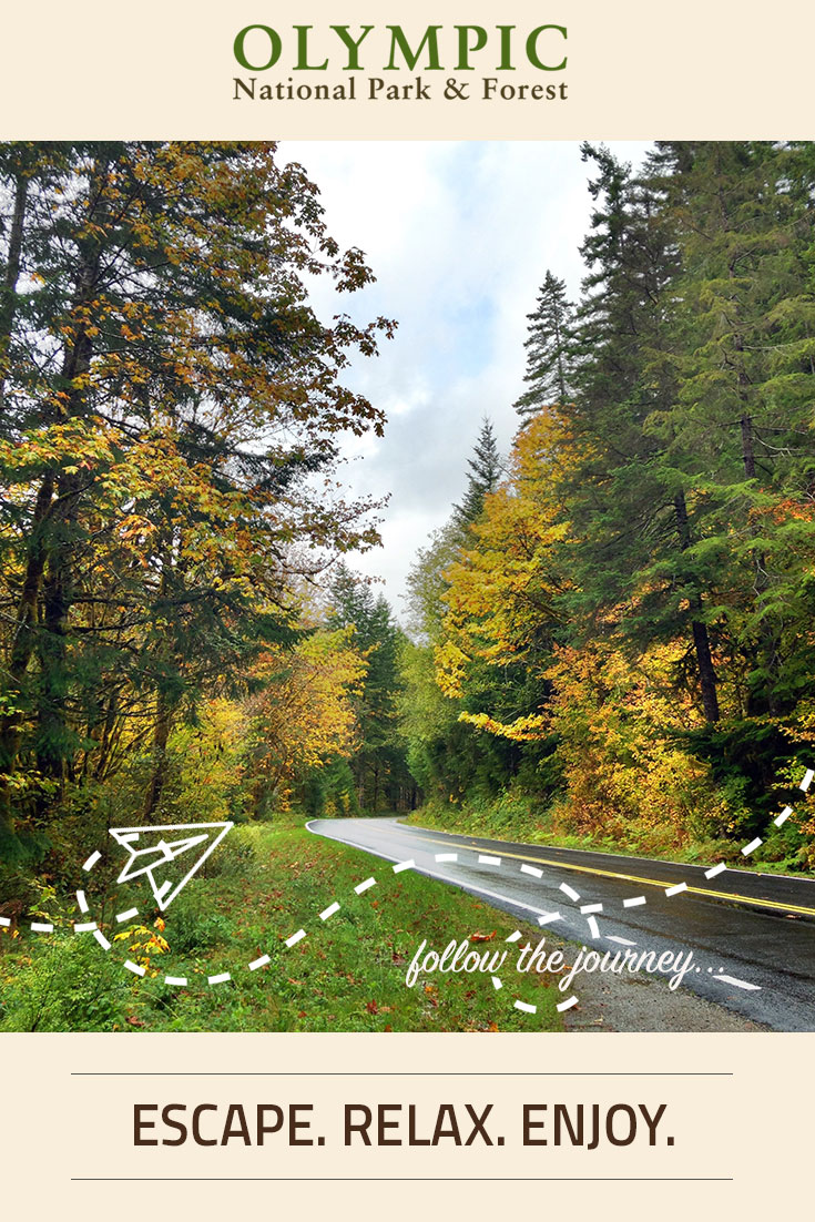 Area Maps | Olympic National Park & Forest | Olympic Peninsula WA