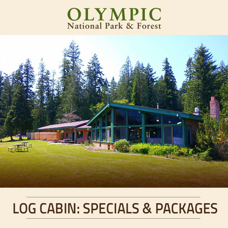 Accommodations At Log Cabin Resort Olympic National Park