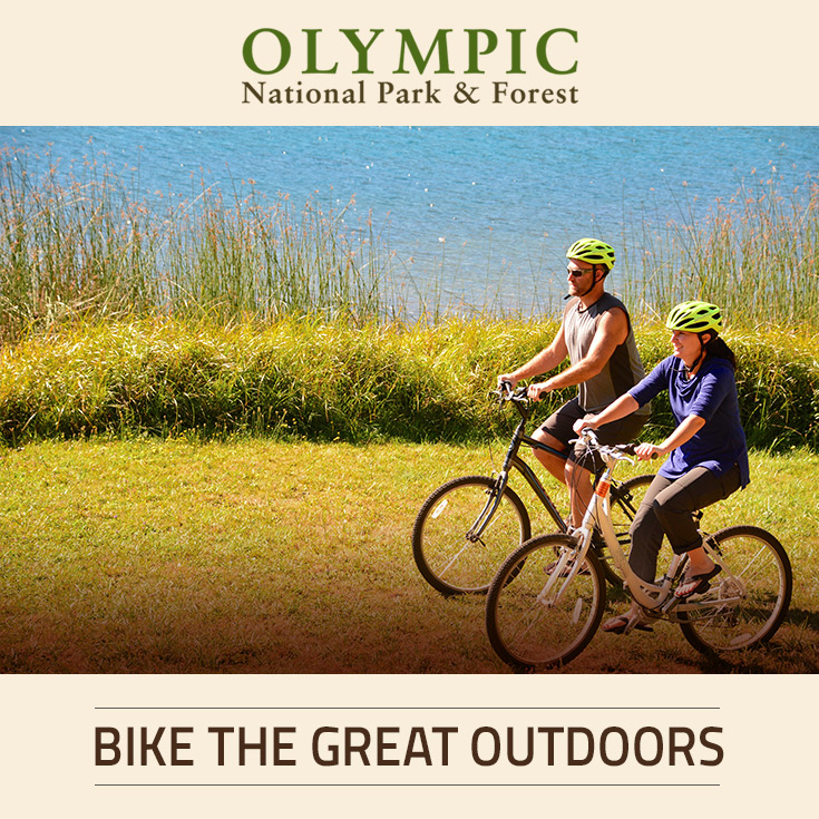 Biking olympic national park forest olympic peninsula wa for Cabin rentals olympic national forest