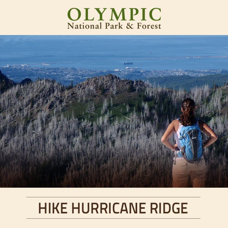 Hiking At Hurricane Ridge