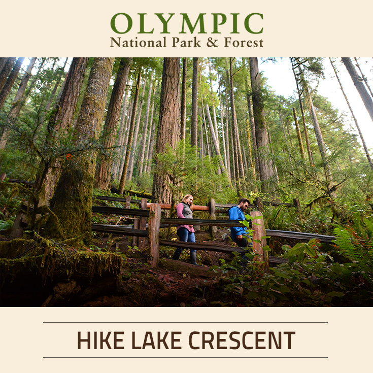 Guided hiking at lake crescent lodge olympic national for Cabin rentals olympic national forest