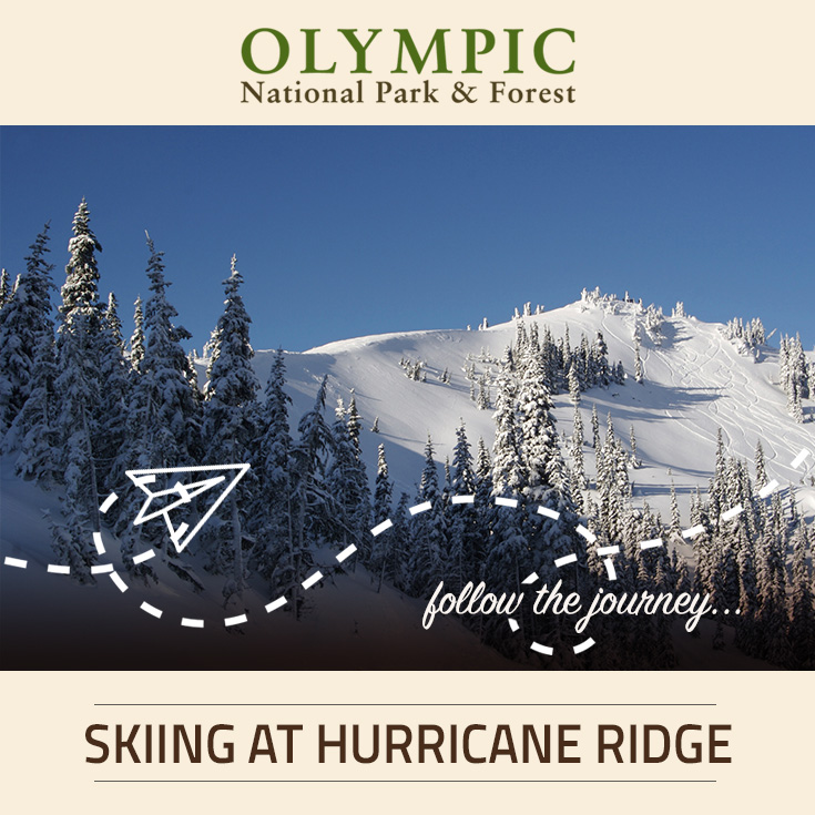Skiing snowboarding at hurricane ridge olympic for Cabin rentals olympic national forest