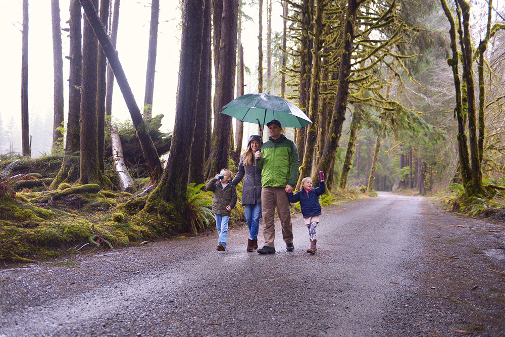 Lake Quinault Rainforest Tour